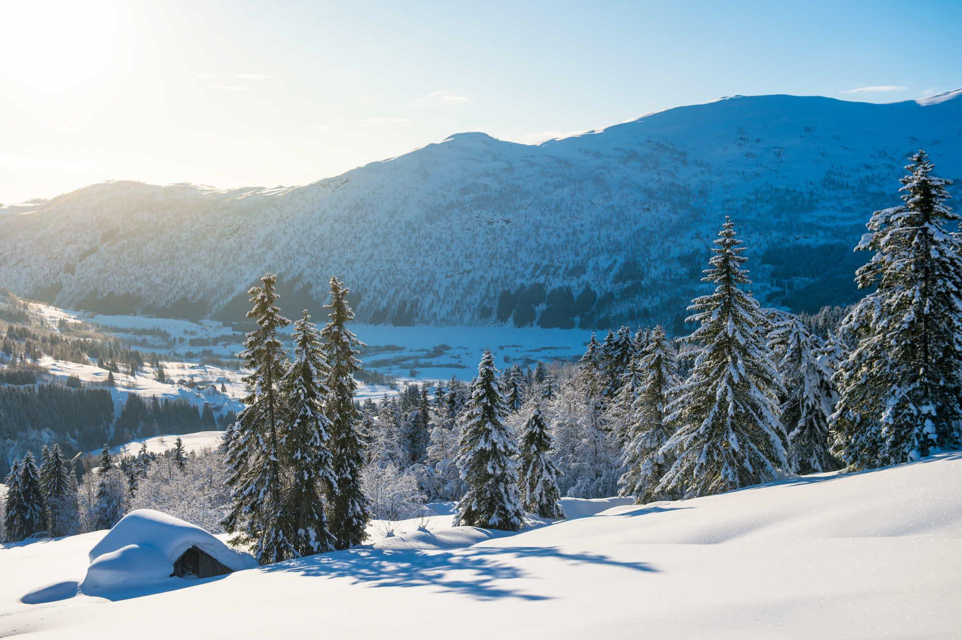 Myrkdalen i vinterdrakt med snøkledd løe, trær og vann