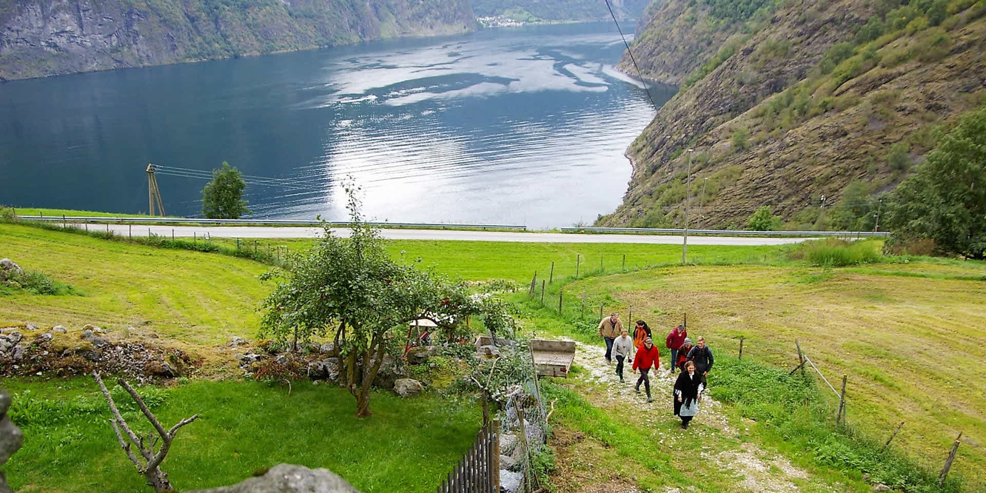 Guided group of 8 people walking up the steep trails to 'Skaldegard' farm, overlooking the Aurland fjord