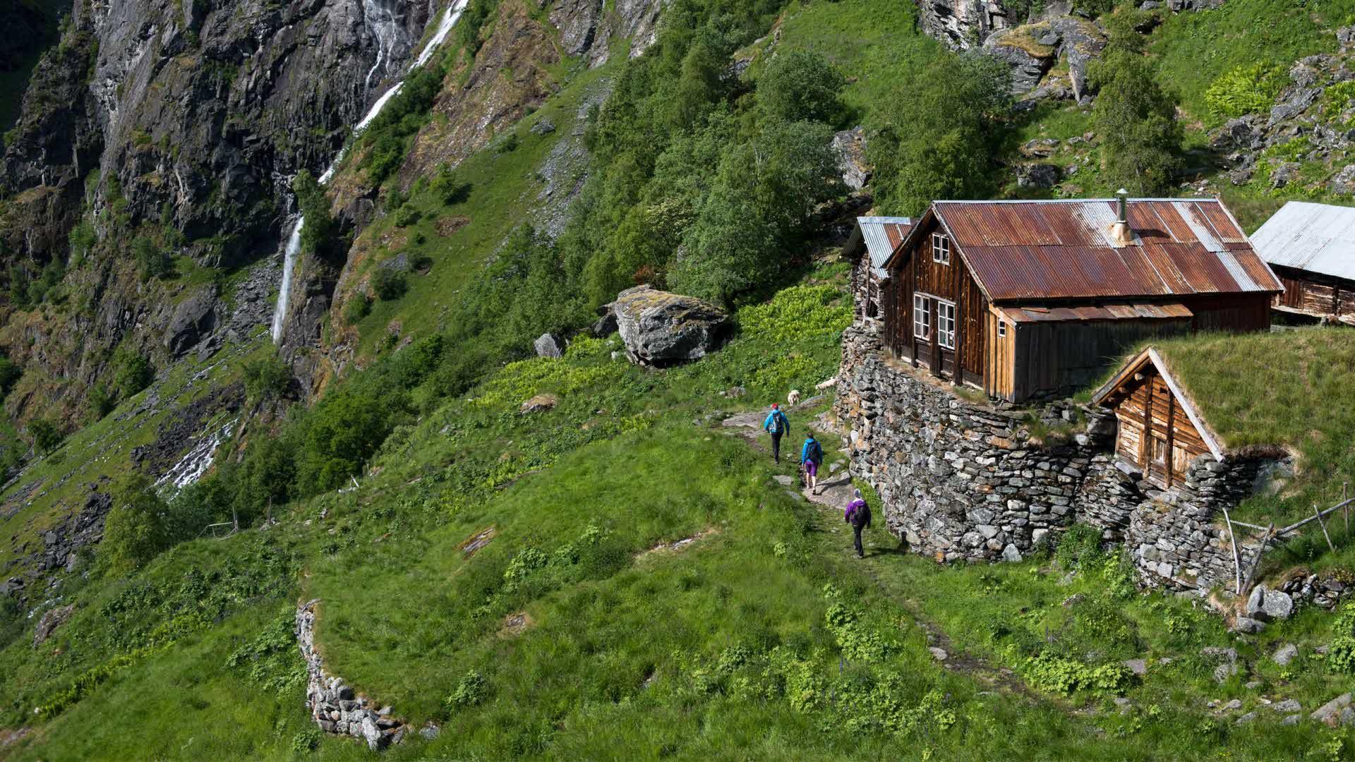 Tre personer går under de høye murene under Sinjarheim i Aurlandsdalen