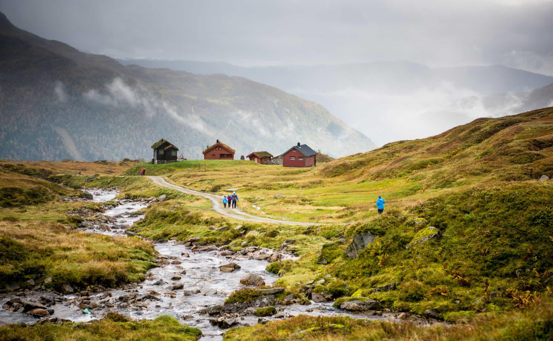 Eine Gruppe von Wanderern wandert bei Regen in Richtung Mørkvesstølen