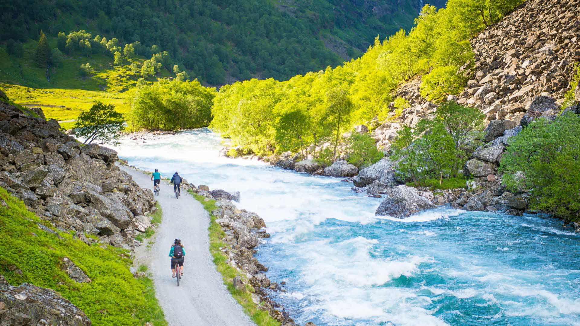 Two people cycling along the river down Flåmsdalen, with blue skies and green grass