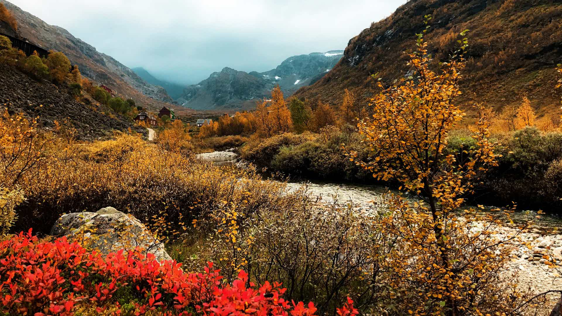 Bright red and brown autumn colours the top of flam valley as you can see gravel road twisty bends between the mountains